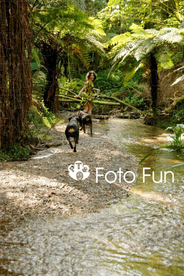 Woman with her rottweiler dogs in creek