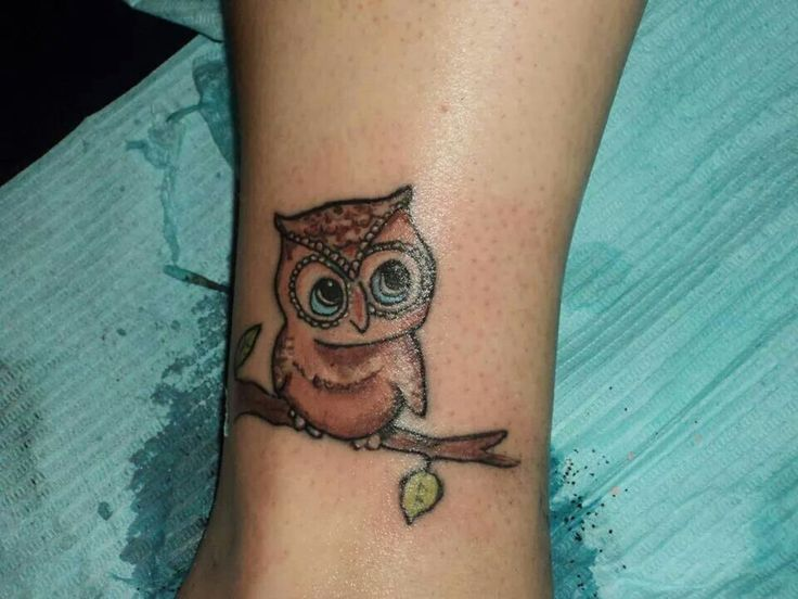 Owl done by pete t.o.t