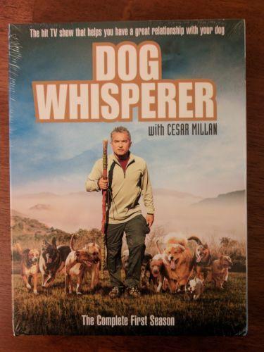 Dog Whisper With Cesar Millan