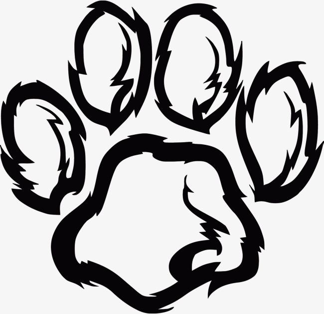 Vector Dog Claw Dog Paw Clipart Dog Vector Dog Clipart Png Transparent Clipart Image And Psd File For Free Download Paw Print Clip Art Paw Drawing Dog Paw Drawing