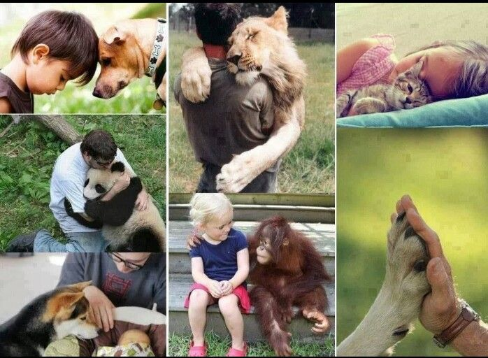 A 1,000 words in a pic. COMPASSION, LOVE & RESPECT to name a few!