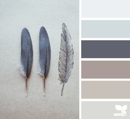 Feathered Tones (design Seeds). Grey Colour Scheme BedroomCalming ...