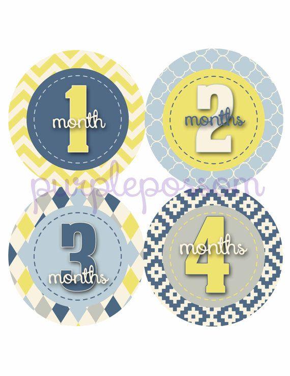 Baby Month Stickers Baby Monthly Stickers Baby by PurplePossom, $9.00