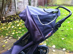 Aviator Pig: Dyeing a Phil and Ted Stroller