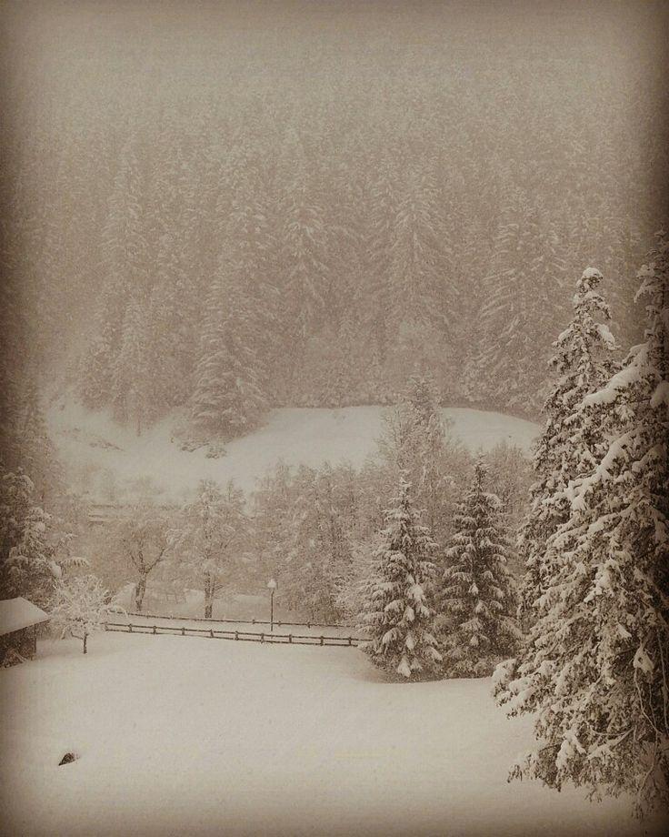 """""""Dà la neve come lana; Sparge la brina proprio come cenere."""" - Salmo 147:16"""