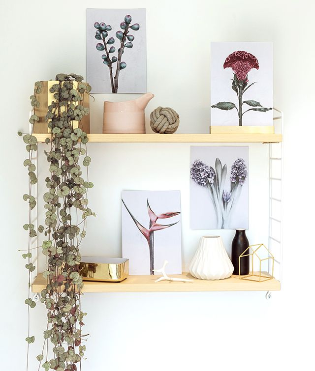 TDC: norsu Launches Botanica Series by Vee Speers + Reader Offer