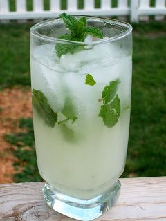 If you are like me, you have mint on your windowsill for one reason and one reason only. Say it with me … MOJITOS. I love myself a mojito, and they are pretty simple to make and enjoy. But si…