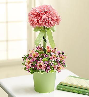 I like the idea of this arrangement as a center piece for a table.