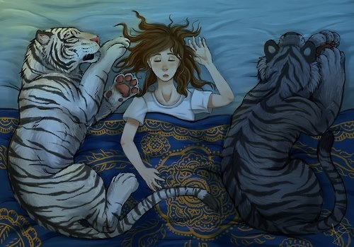 Tiger's curse - ren, kelsey and kishan