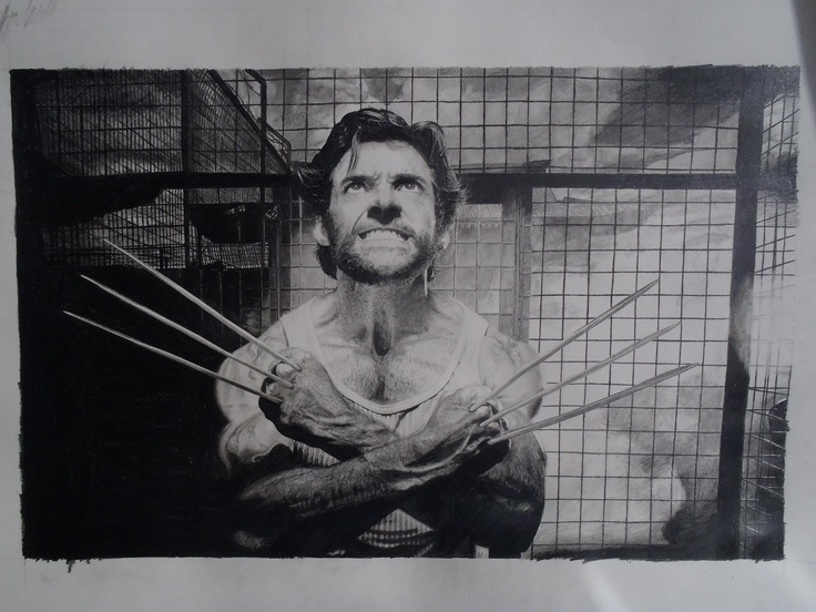 A pencil drawing of wolverine. (https://www.facebook.com/pages/Adrian-Sandham/198055230325522)