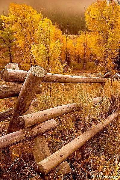Log fence a collection of other ideas to try