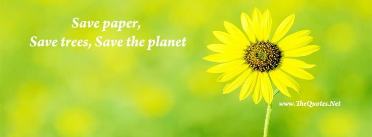 Facebook Cover Image - Beautiful Flower. Save paper, save trees, save the planet.