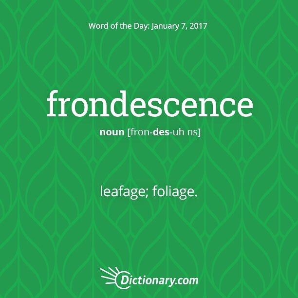 Frondescence?