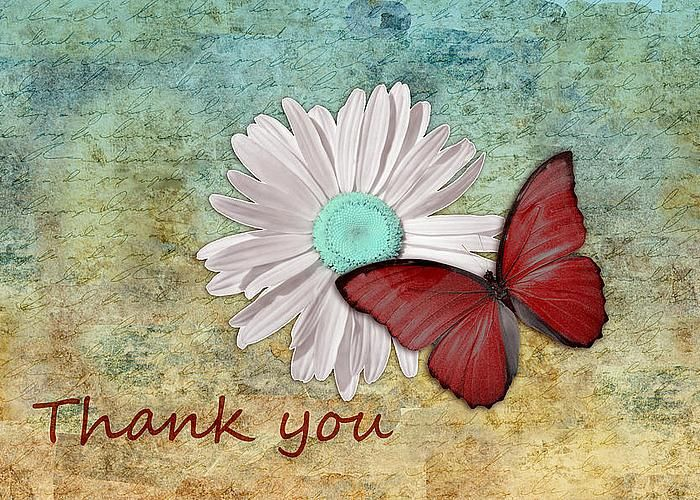 Butterfly on Daisy - Thank You Card Greeting Card by Aimelle