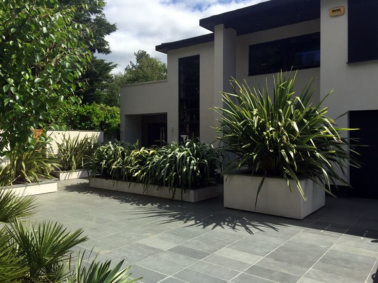 Stunning Brazilian slate grey paving used in this contemporary home looks perfect against strong structural planting https://mrs-stone-store.com/brazilian-grey-slate-paving-slabs/ #outdoorspace #gardendesign #paving #slate