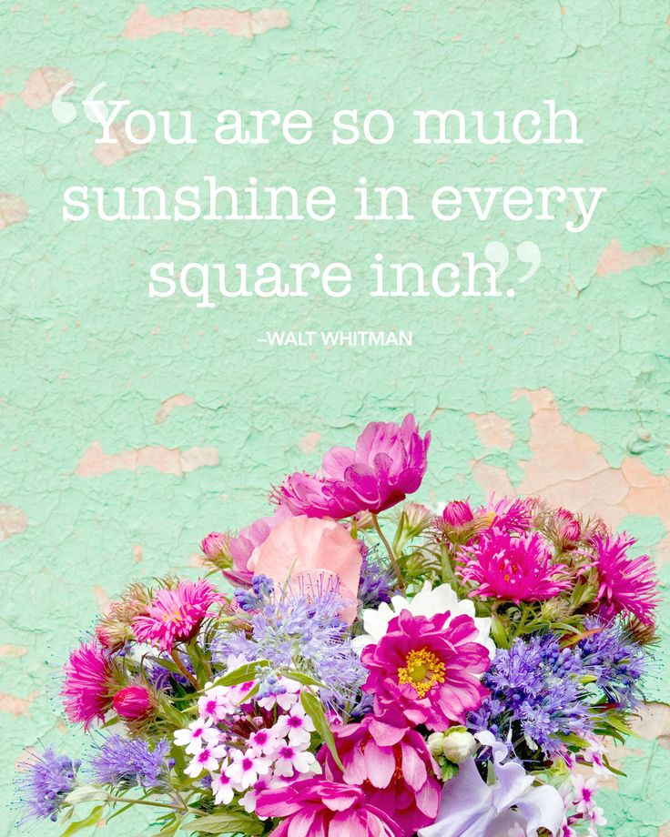 Floral Positive Motivational Quotes: 17 Best Quotes About Flowers On Pinterest