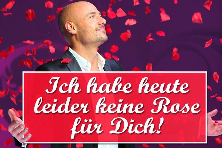 """Der Bachelor 2014: Wer ist raus?Bachelor, wer ist raus? Wir verraten Ihnen, wer in der aktuellen """"Der Bachelor 2014""""-Sendung keine Rose"""