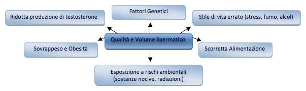 Volume spermatico e infertilità Cos'è lo sperma, e cosa ne determina volume e qualità?