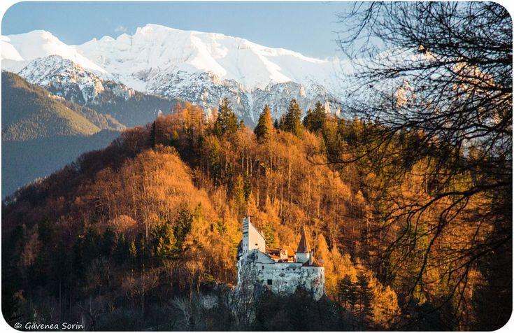 Dracula's Castle by Gavenea Sorin