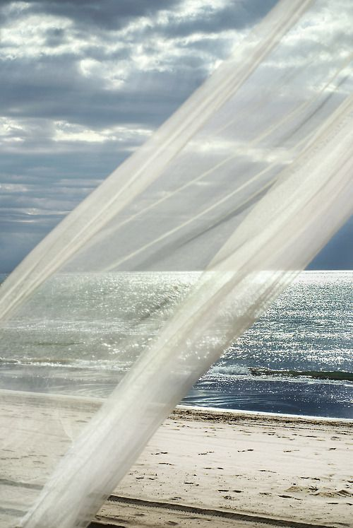 Feel the Ocean Breeze!