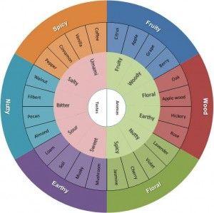 Chocolate and Wine Tasting Wheel