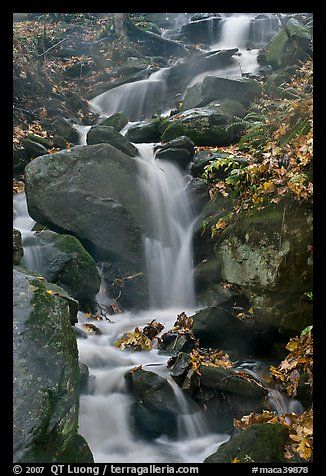 Cascading stream. Mammoth Cave National Park, Kentucky, USA.