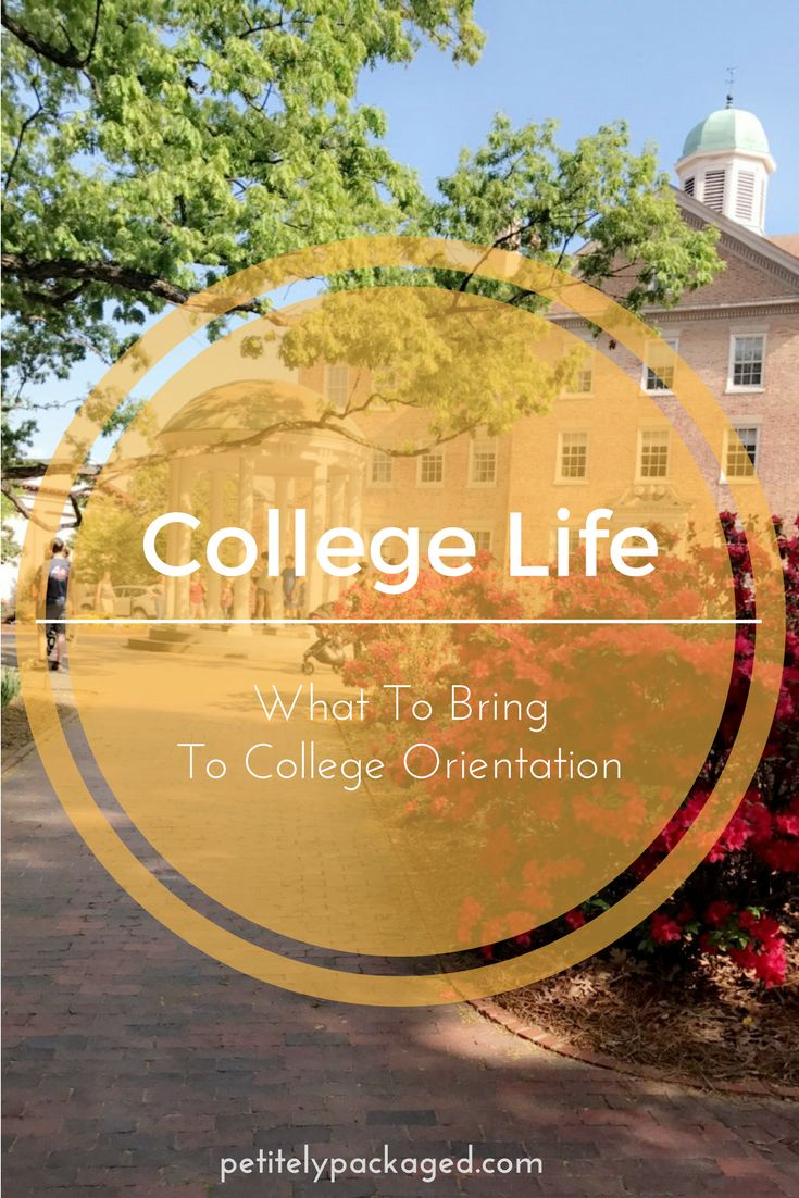 Tips on what rising freshman or transfer students should bring with them to college orientation to make the most of their trip. | #petiteposts #bloggingcollege #collegeblogger #college #university #collegeorientation #lblogger #education