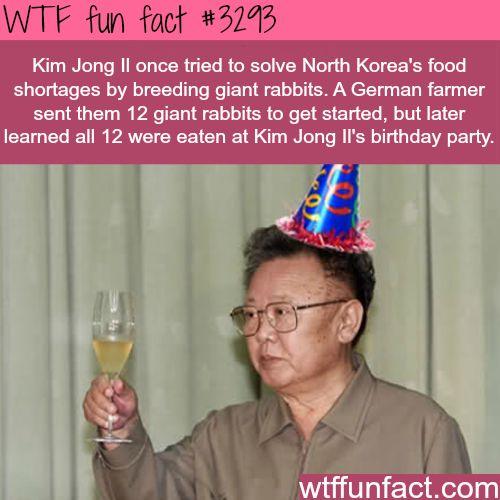Kim Jong Il's birthday -  WTF fun facts