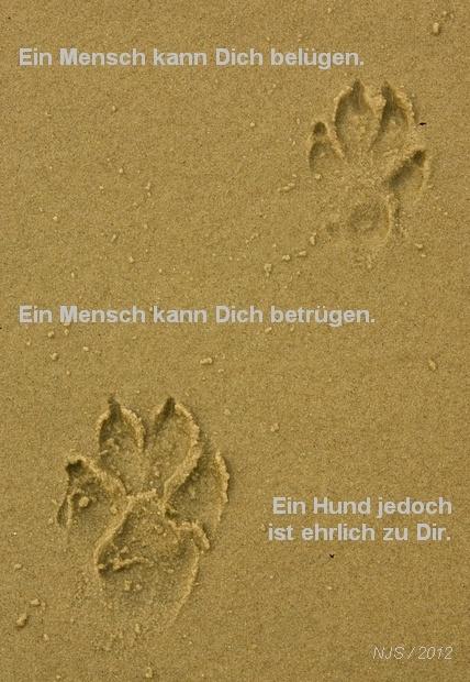 Menschen lügen & betrügen, ein Hund ist  ehrlich zu Dir ... - - People lie and cheat, a dog is honest to you ... -