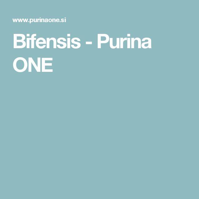 Bifensis - Purina ONE