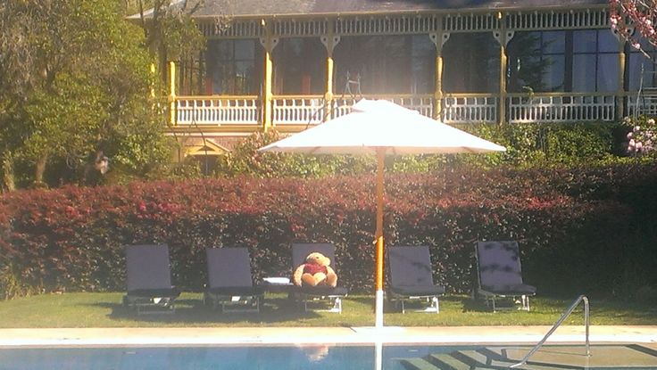It's a tough life...but somebody, or some bear has to do it.  Lilianfels' mascot Sir Frederick relaxes by the pool.