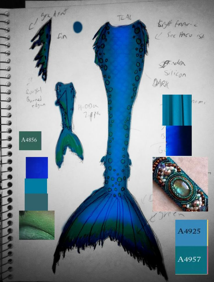 mermaid tail how to draw