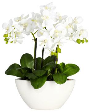 Phalaenopsis w/White Vase Silk Flower Arrangement - transitional - artificial flowers - Covered In Style Inc