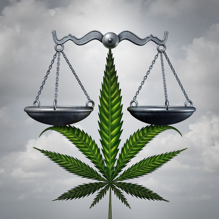 Cannabis van de zwarte markt kan vervuild zijn en niet iedereen krijgt wiet van de dokter. Maar als je zelf wiet kweekt ben je verzekerd van een schoon product waarover jijzelf de controle hebt gehad.