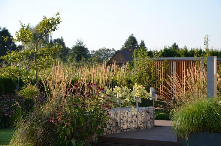 grass ornamental  modern garden malkul