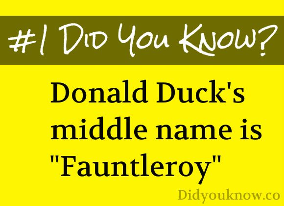 Donald Duck's Middle Name