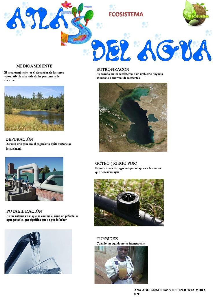 Ecosistemas Ana Aguilera y Belén Resta 2º F