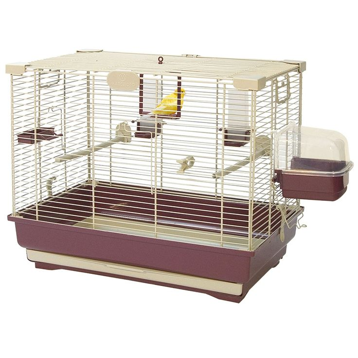 1000 ideas about cheap bird cages on pinterest bird for Cheap c c cages