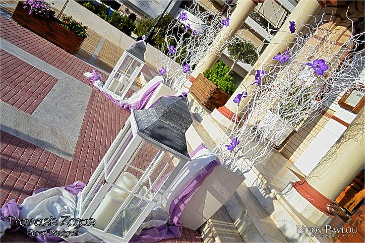 White manzanita branches with purple Vanda orchids