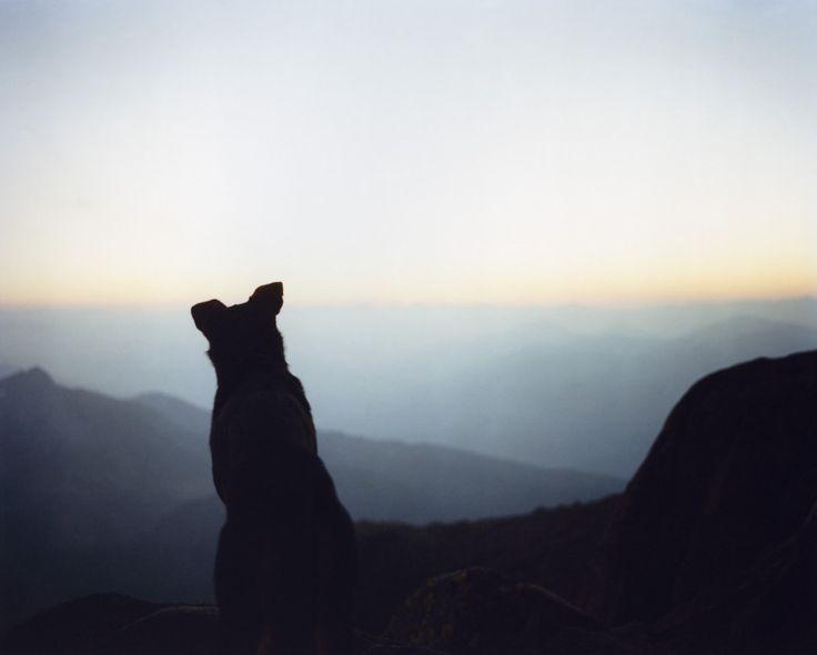 Le montagne del Trentino orientale: racconto di un viaggio - Girovagando in Trentino