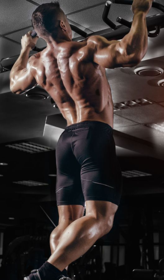 The Best Back Exercises to Build Your Best Back Ever | If you want to know the best back exercises for building a strong, muscular, and defined back, then you want to read this article.