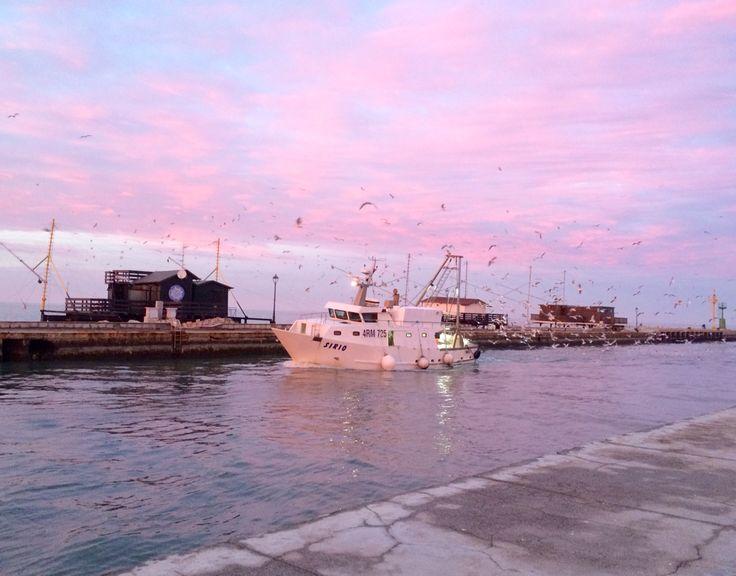 Cesenatico. Ritorno dei pescatori