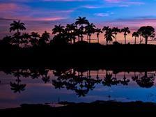 Photos • Visit Barbados • Pictures & Beach Photos