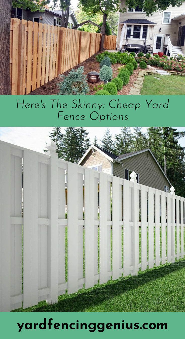 Learn About Creative Fencing Ideas Fence Options Privacy Fences