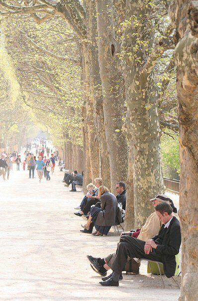 Jardin des Plantes - Paris 5e. I LOVE thuis place in the summer ♡