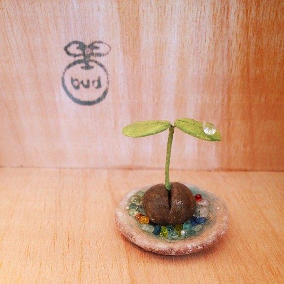 粘土でつくった豆の木です。 水あげ不要です。 いろんな場所に飾ってください。受け皿には、ガラス屑が敷いてあります。双葉の上にもガラスの雫が。涼しげな作品になり... ハンドメイド、手作り、手仕事品の通販・販売・購入ならCreema。