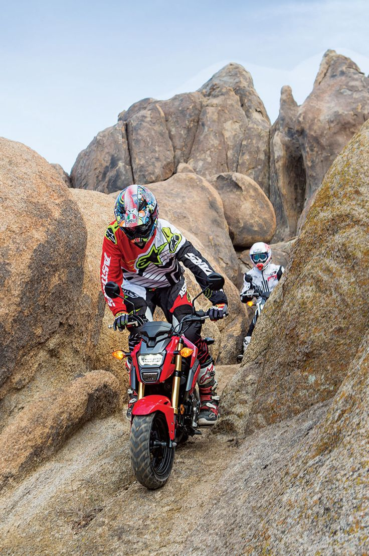 Honda Grom off-road rock action
