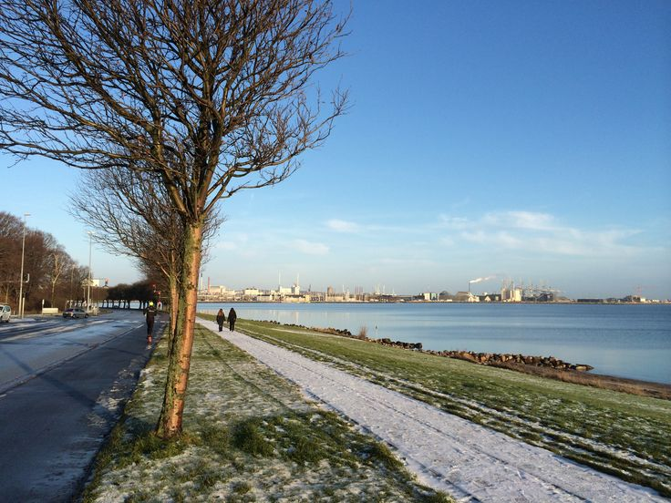 Enjoy Winter in Aarhus