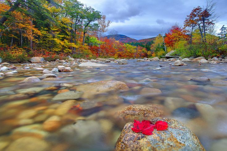 Fall Wallpaper And Screensavers For Free Stranded Swift River Kancamagus Highway White
