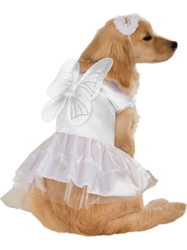 Angel Dog Costume Dog Dresses Pet Costumes Pet Halloween Costumes
